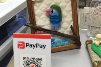 PayPay導入しました!!