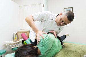 新潟整体工房で産後の骨盤矯正時でよく利用するディバーシファイドという技術です。